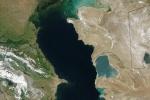 Coastal Marine Eutrophication